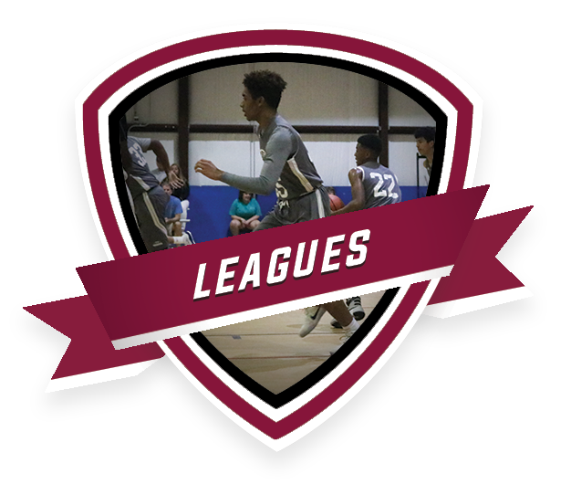 CTAs_TNBAOhio_LEAGUES